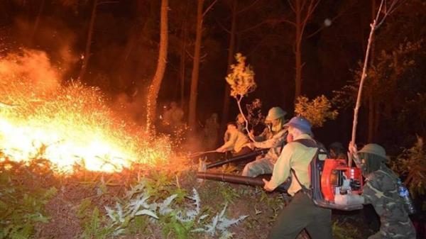 Ninh Bình: Chuyện những người lính trở về sau vụ cháy rừng trên núi Vụng Quao