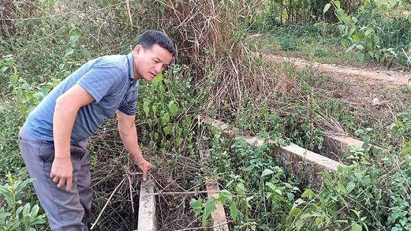 Điện Biên: Hàng chục hecta rừng bị phá oan