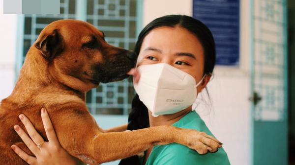 Chủ mất vì Covid-19, chú chó được tình nguyện viên nuôi dưỡng rồi cũng qua đời: 'Nó không đợi được ngày để tang chủ'