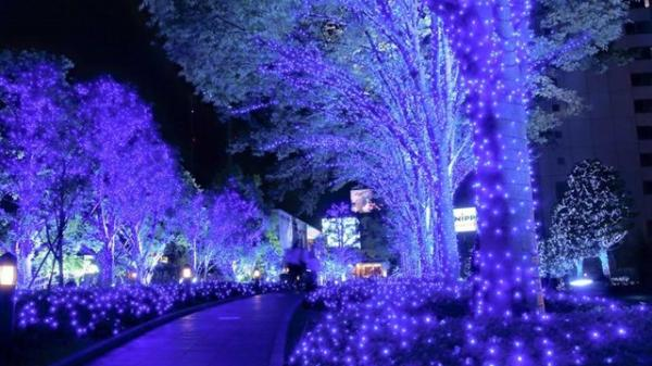 Giáng sinh này QUẨY tưng bừng, MIỄN PHÍ tại 'Xứ sở ánh sáng' cực hot ngay giữa lòng Hà Nội