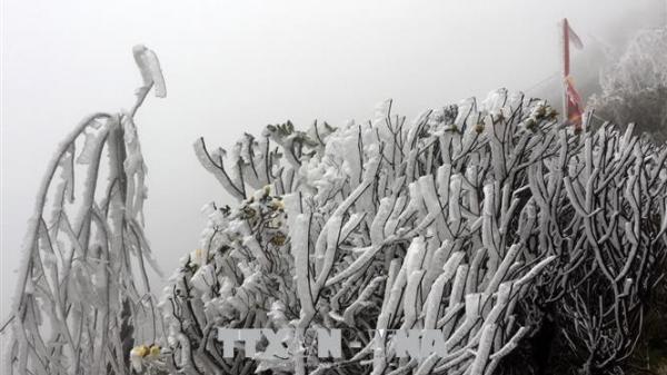 Từ ngày 29/12, một số nơi ở Bắc Bộ khả năng xảy ra băng giá và mưa tuyết
