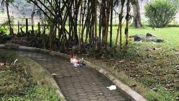 Hà Nội: Người bán nước trà kể lại lần gặp người phụ nữ c hết bí ẩn trong vườn hoa Hà Đông