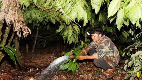 Tây Nguyên: Người dân ngập trong nước mắt vì thiếu nước