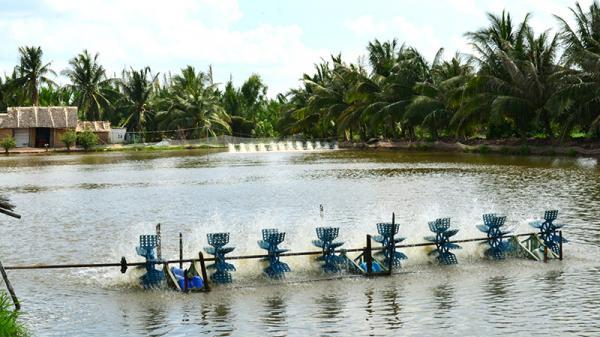 Trà Vinh tăng trưởng kinh tế cao nhất Đồng bằng sông Cửu Long