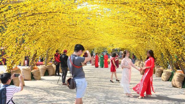 """Giới trẻ """"mê mệt"""" với đường hoa mai chào xuân đẹp tựa chốn thiên đường tại Sài Gòn"""