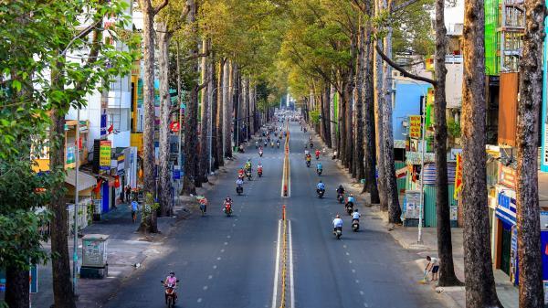 Các con đường ở TP.HCM đẹp lạ những ngày cách ly xã hội