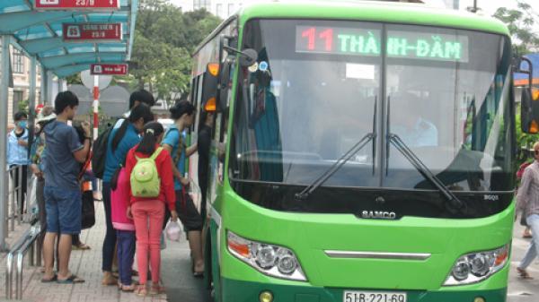 Những thông tin về xe buýt người dân TP.HCM cần biết trong dịp Tết