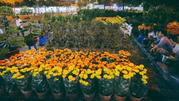 """Người bán hoa Tết ở Sài Gòn nghẹn lòng kể chuyện bị ép giá ngày 30: """"Mong mọi người hãy bỏ tâm lý mua hoa giờ chót"""""""