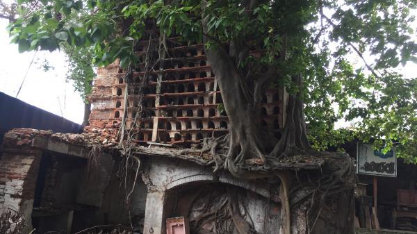 Ngôi đền thiêng và bí ẩn về người Tamil giữa Sài thành