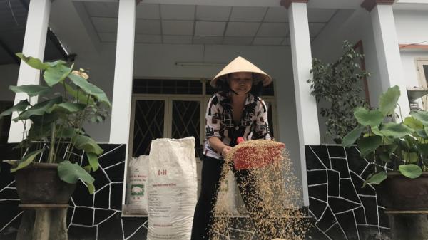 Khu dân dã kỳ lạ ở Sài Gòn