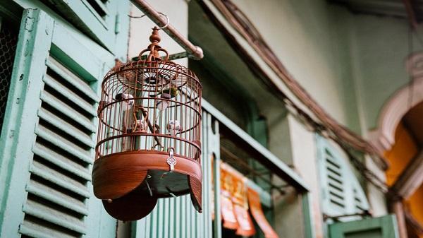 """Chuyện về con hẻm 100 năm tuổi đậm chất """"Hong Kong"""" giữa lòng Sài Gòn mang tên Hào Sỹ Phường"""