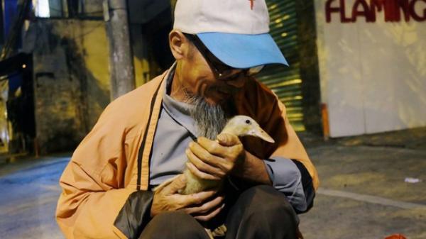 """Câu chuyện đáng yêu về chú vịt què và ông già cô đơn ở Sài Gòn: """"Từ ngày con 'quỷ sứ' này chạy theo, ông thấy vui hơn nhiều"""""""