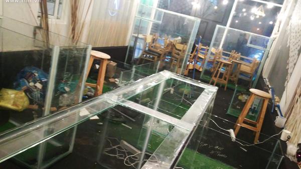 Sau 1 tháng nổi như cồn, cà phê cá bơi ở Sài Gòn đóng cửa bảo trì