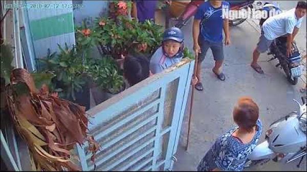 TP.HCM: Tình làng nghĩa xóm tan nát vì chó thả rông!