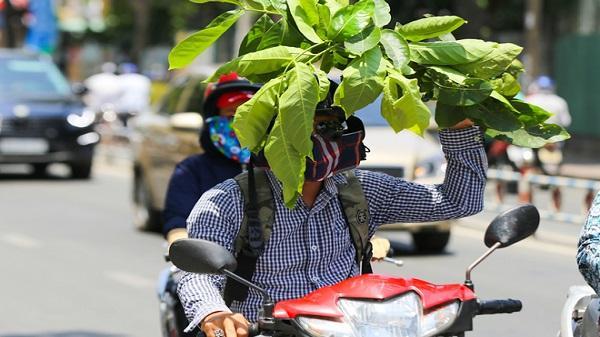 Người Sài Gòn vật vã trong nắng nóng hầm hập đầu mùa