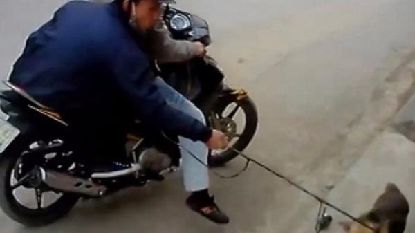 Hà Tĩnh: Bị phát hiện, 2 đối tượng trộm chó vứt bỏ xe máy chạy thoát thân