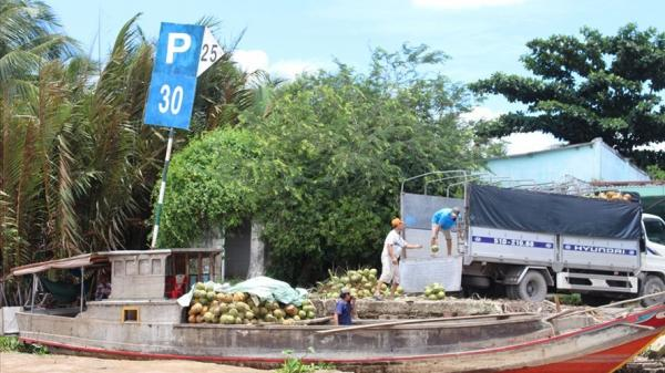 """Hai học sinh nghèo ở Bến Tre trả lại """"5.000 trái dừa"""" nhặt được"""