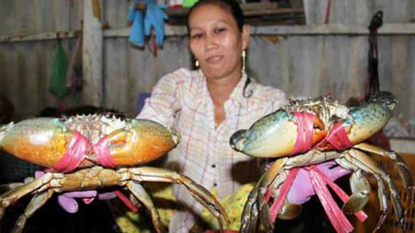Đại gia Thái mang cua Cà Mau, bưởi da xanh Việt xuất ngoại