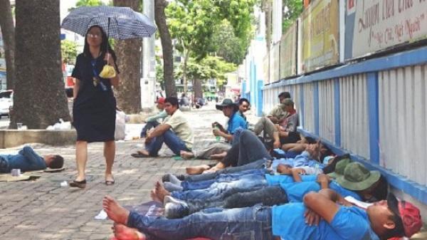 TP. HCM: Trời nắng nóng, công nhân nằm xếp lớp ngủ trưa trên vỉa hè