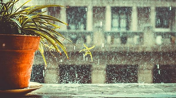 Sài Gòn có những phút giây lãng đãng..., khi bất chợt một chiều mưa xối xả không dứt!