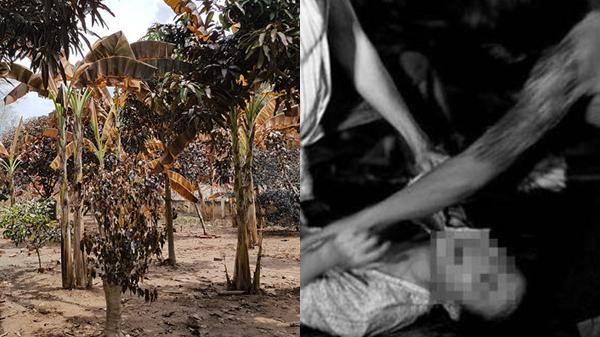 ĐIỂM TIN NÓNG CÁC TỈNH NAM BỘ (7-14/10): Rò rỉ khí amoniac làm 4 người bị thương, giải cứu cô gái bị cưỡng hiếp tập thể