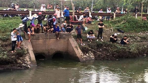 Người dân TP.HCM đổ về kênh Nước Đen giăng lưới bắt cá