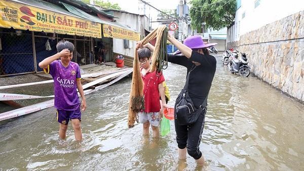 Nước ngập lớn, người dân TP.HCM đánh bắt cá ngay trên... đường phố