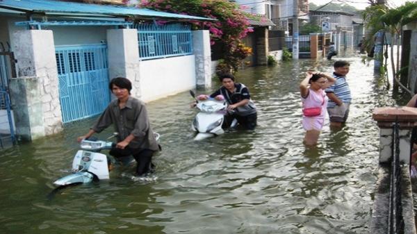 TP. Hồ Chí Minh chuẩn bị đón mưa lớn, 'đỉnh triều sẽ lên cao chưa từng thấy'