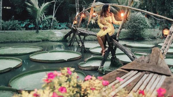 """Phát hiện """"ốc đảo xanh"""" có lá sen khổng lồ tuyệt đẹp ở Sài Gòn"""
