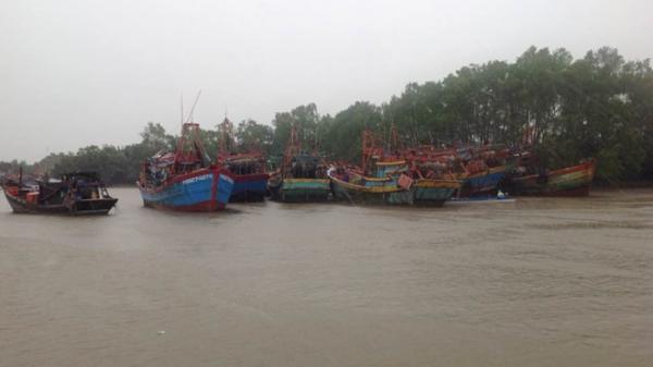 Trà Vinh cho tàu ra khơi bám biển sau bão số 16