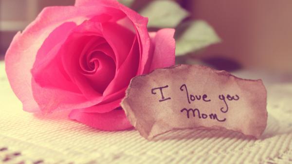 11 lời chúc ngày Quốc tế Phụ nữ 8/3 hay và ý nghĩa nhất tặng mẹ