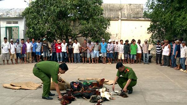 NÓNG: Bắt sòng bạc quy tụ hàng trăm người sát phạt ở miền Tây