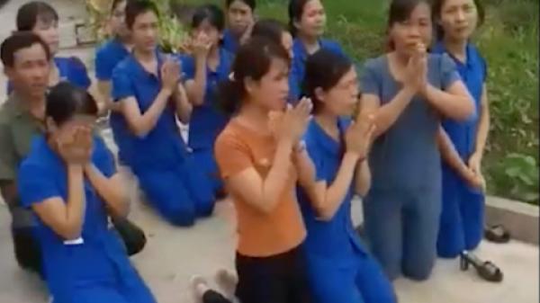 Cô giáo quỳ gối xin dạy ở Nghệ An: Công an xác minh dàn dựng