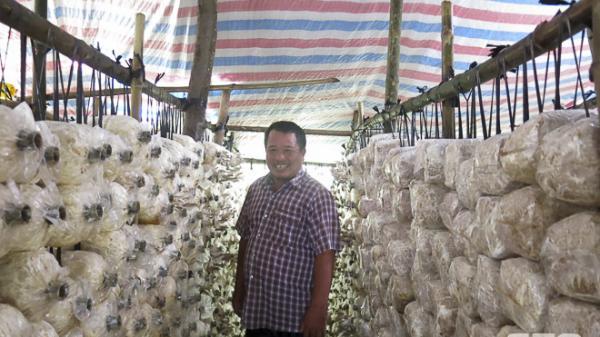 Nông dân Sóc Trăng thu nhập khá nhờ trồng nấm bào ngư
