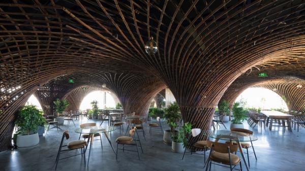 Độc đáo nhà mái vòm tre như hang động khổng lồ trên nóc ngôi nhà ở Vinh