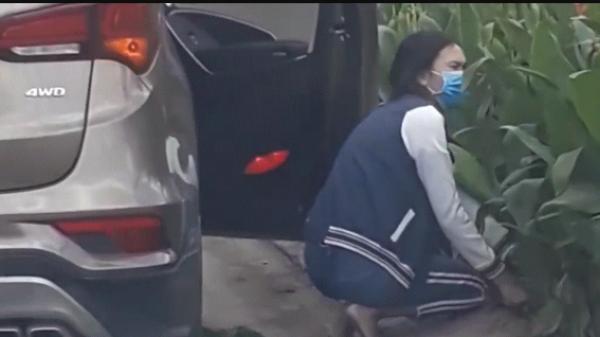 Tp.HCM: Người phụ nữ đi ô tô bịt khẩu trang xuống xe nhổ hoa nơi công cộng mang đi mất hút