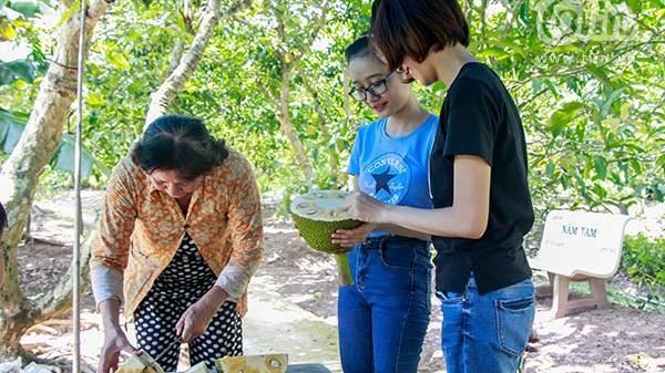 Chủ vườn trái cây miền Tây: 3 năm móng tay không kịp mọc, 2 năm ăn trái cây thay cơm