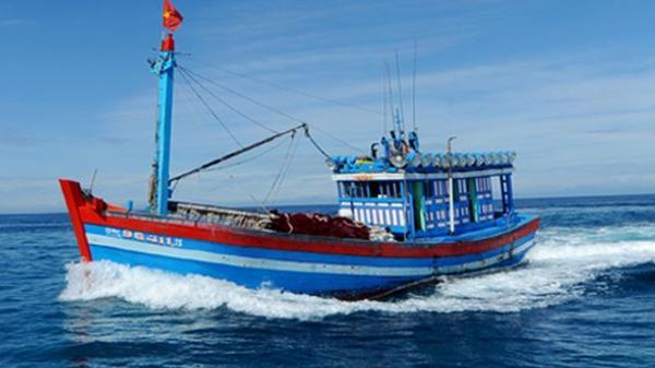 Cà Mau: Kêu gọi tìm kiếm thuyền viên mất tích
