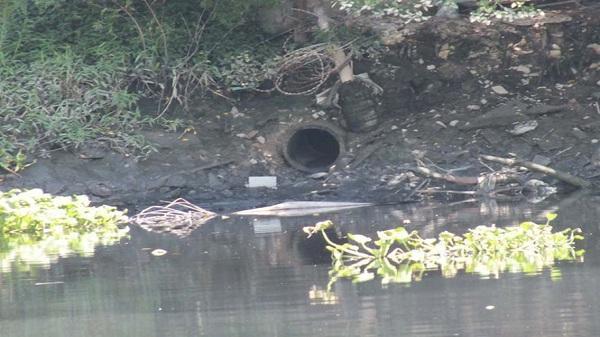 Trà Vinh: Phạt 120 triệu đồng một DN xả nước thải vượt chuẩn ra môi trường