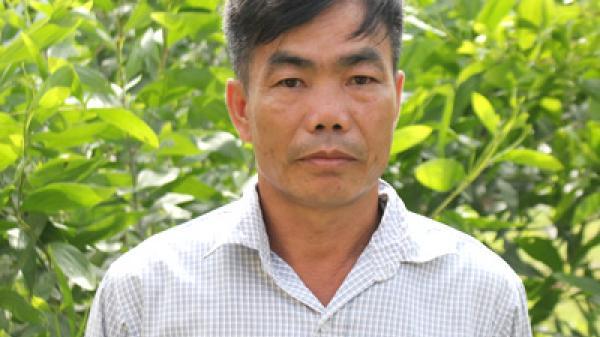 Tuyên Quang: Lãi hơn 300 triệu đồng/năm từ kinh tế trang trại