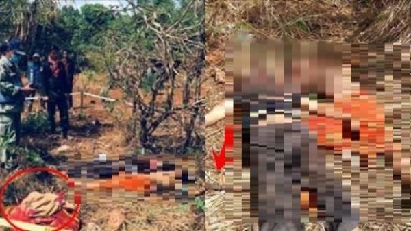 Rùng mình người đàn ông chém vợ chết tức tưởi giữa vườn rồi tự sát để lại 3 đứa con thơ