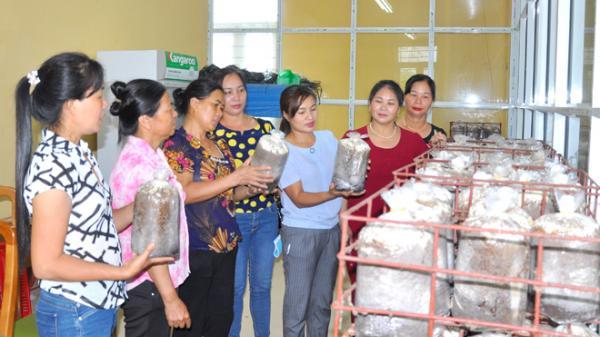 Tuyên Quang: Khẳng định vai trò, vận động hội viên chung sức xây dựng quê hương