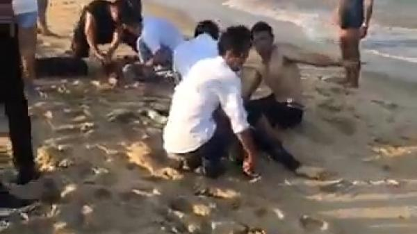 4 học sinh bị sóng biển nhấn chìm t.ử v.ong: Tuyệt vọng ấn ngực cứu người