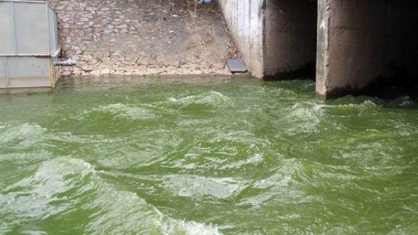 Hà Nội: Hơn 800.000m3 nước từ hồ Tây đang ồ ạt xả vào sông Tô Lịch