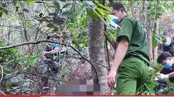 Bàng hoàng phát hiện th.i th.ể đang phân hủy nằm úp mặt xuống đất trong rừng