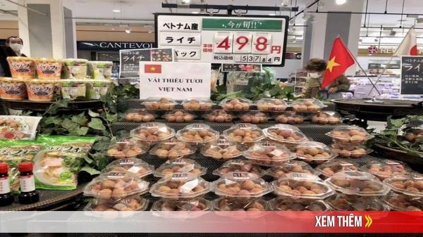 Dân mạng Việt khoe những trái vải bán trong siêu thị Nhật, 120k được mỗi 7 quả mà vẫn 'cháy hàng'