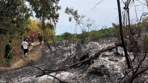 Đã khống chế được vụ cháy rừng