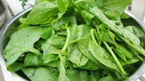 Những điều cần tránh khi ăn rau mồng tơi