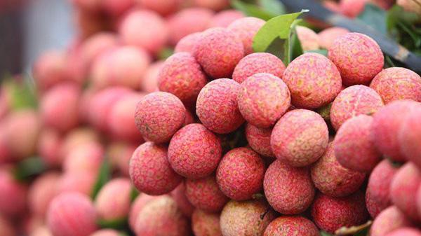 Vải, mận vào mùa, thị trường rau quả trong nước sôi động