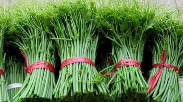Su su - Đặc sản ẩm thực thương hiệu Tam Đảo